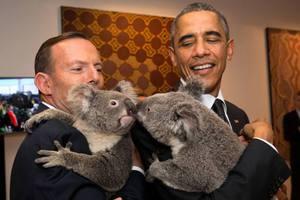 Αγκαλιές με κοάλα στη σύνοδο των G20