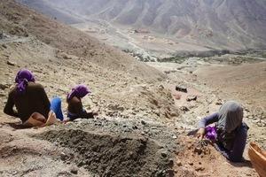Θάνατοι 300 παιδιών από υποσιτισμό σε έρημο του Πακιστάν