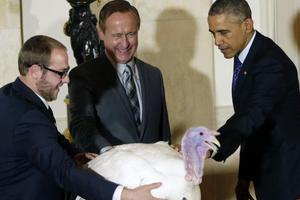 Τι συμβαίνει στις γαλοπούλες που δίνει χάρη ο Ομπάμα