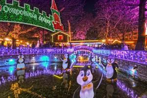 Μαγικά Χριστούγεννα στην Ονειρούπολη Δράμας