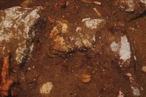 «Περιμένουμε την απόφαση του υπουργείου Πολιτισμού για τη συνέχιση των ανασκαφών»