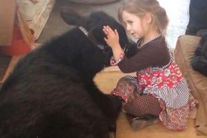 a_cute_5_year_old_brings_home_an_unexpected_guest_640_08_1419255109696