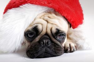Τα δέκα πιο θλιμμένα ή... θλιβερά χριστουγεννιάτικα τραγούδια