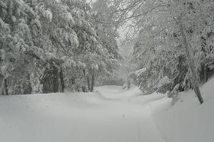 Μάχη με τον χιονιά στη Κρήτη για τη διάσωση γυναίκας