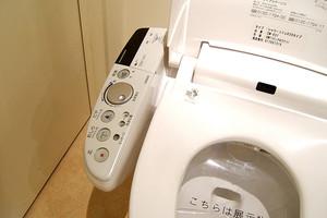 Δημόσιες τουαλέτες ανά τον κόσμο