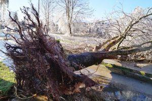 Παράταση της κατάστασης έκτακτης ανάγκης στο δήμο Βιάννου
