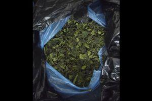Μεγάλη ποσότητα ναρκωτικού khat βρέθηκε στη Ρόδο