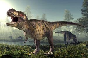 c-14 ραντεβού με οστά δεινοσαύρων