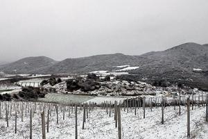Φωτογραφίες από τη χιονισμένη Αμφίπολη