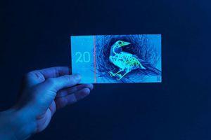 Το οικολογικό... ευρώ