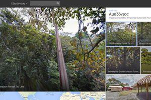 Ταξίδι στη ζούγκλα του Αμαζονίου μέσω του διαδικτύου