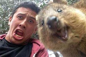 Η νέα μανία στις αυστραλέζικες selfies