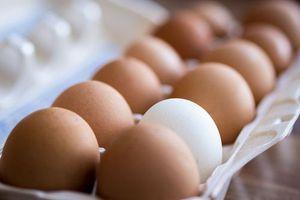 Η σχέση αυγών-χοληστερίνης