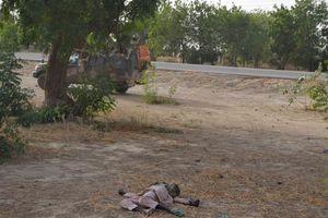 Τσαντ και Νίγηρας επιτίθενται στη Μπόκο Χαράμ