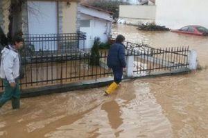 Τον πρωθυπουργό καλούν στις Σέρρες οι αγρότες
