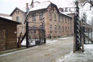 Γερμανίδα κληρονόμος για την καταναγκαστική εργασία επί Ναζί: Δεν κάναμε κάτι κακό