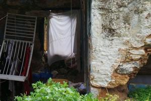 Άθλιες συνθήκες διαβίωσης για τον Λευτέρη από τη Σύρο