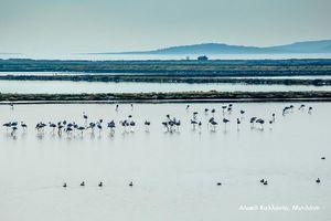 Δράσεις για την προστασία των υδάτινων πόρων