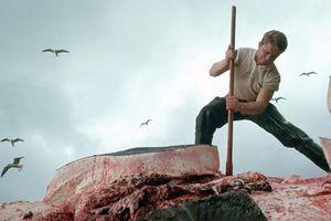 Οι άνθρωποι έχουν εξοντώσει σχεδόν 3 εκατ. φάλαινες τον 20ο αιώνα