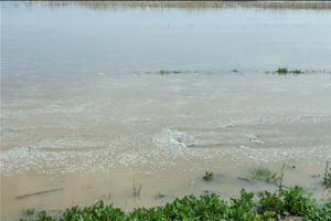Αμέτρητες καταστροφές από πλημμύρες στις Σέρρες