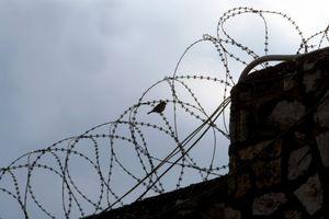 Ποιητές διάβασαν ποιήματα σε κρατούμενους των φυλακών Κορυδαλλού