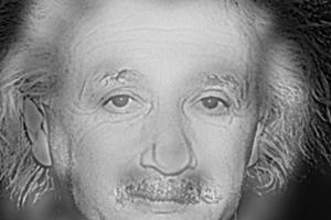 Τι βλέπετε; Τον Αϊνστάιν ή την Μονρόε;