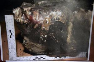 Κατεστραμμένο το δεύτερο μαύρο κουτί της Germanwings