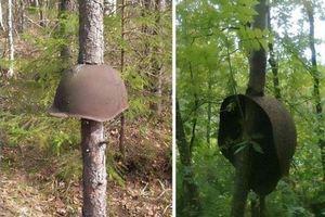 Ένα δάσος μουσείο πολέμου