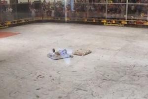 Όταν δύο ρομπότ μονομαχούν
