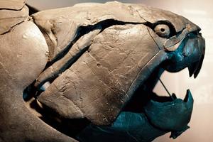 Οι τρομακτικότατοι προϊστορικοί βασιλιάδες της θάλασσας