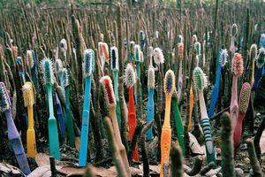 Τα σκουπίδια της Καραϊβικής σε υπαίθριο «μουσείο»