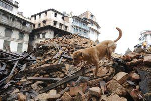 Περίπου 60 Ευρωπαίοι αγνοούνται ακόμα στο Νεπάλ