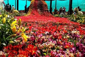 Πρωτομαγιά στην 29η Γιορτή Λουλουδιών της Βάρκιζας