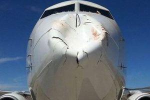 Απίστευτη ζημιά έκανε σε Boeing η σύγκρουση με ένα «τεράστιο πτηνό»!