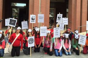 Διαμαρτυρία μαθητών στην Αλεξανδρούπολη για τις φόλες