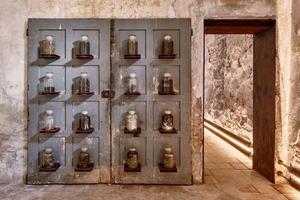 Το μουσείο που εκθέτει… κόπρανα
