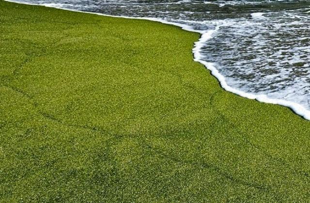 beach3c.jpg