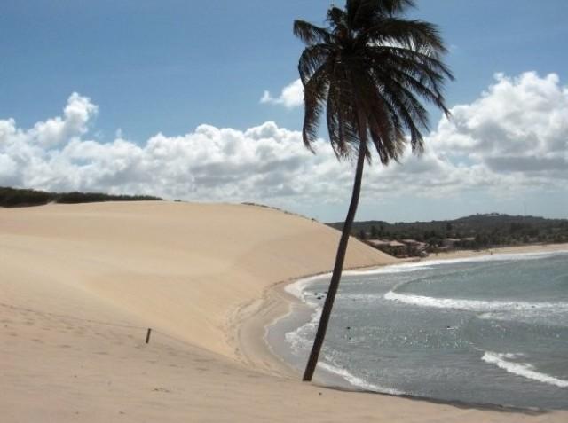 beach95c.jpg