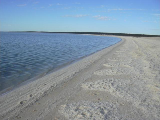 beach96.jpg
