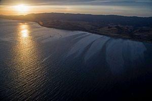 Καθαρίζουν πετρελαιοκηλίδα στην Καλιφόρνια