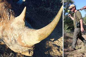 Σκότωσε απειλούμενο ρινόκερο για το... καλό του είδους!