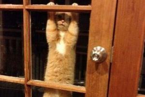 Ας ανοίξει κάποιος την πόρτα