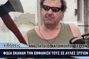 Ο απόλυτος εξολοθρευτής φιδιών ζει στις Σέρρες