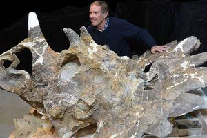 Απολίθωμα αλλόκοτου δεινόσαυρου ανακαλύφθηκε στον Καναδά