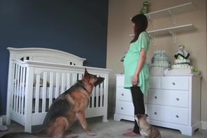 Μία εγκυμοσύνη σε 90 δευτερόλεπτα