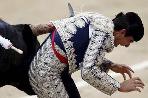 Ταύρος κάρφωσε τα κέρατά του στην «ευαίσθητη περιοχή» ταυρομάχου
