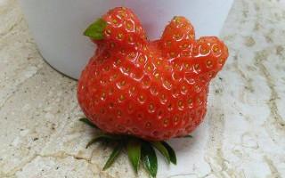 Φρούτα και κηπευτικά που θυμίζουν κάτι άλλο