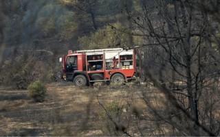 Υπό μερικό έλεγχο η φωτιά στο Σοχό Θεσσαλονίκης