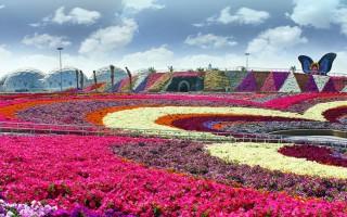Ένας κήπος-θαύμα μέσα στην έρημο