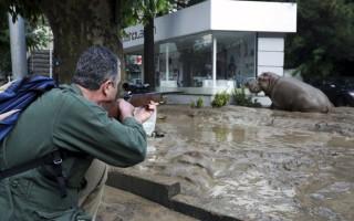 Φονικές πλημμύρες στη Γεωργία